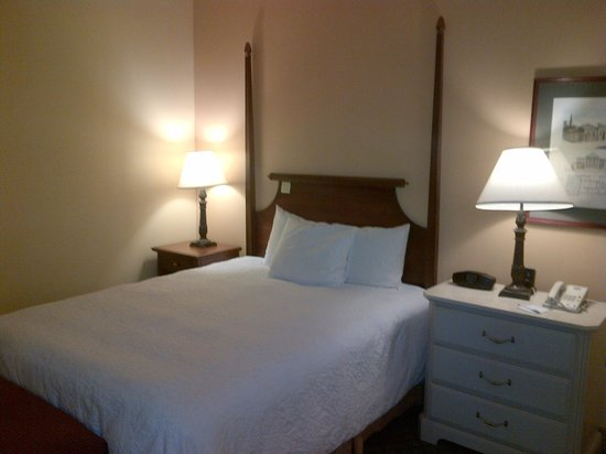 Hampton Inn & Suites New Orleans Downtown (French Quarter Area): Bed set up