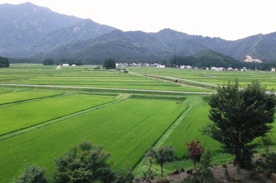 Yumotokan: 宿の周りの田園風景