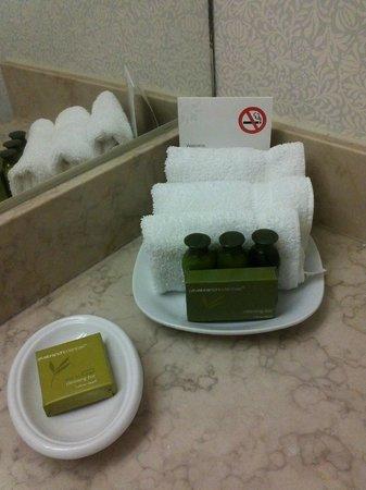 Toronto Don Valley Hotel & Suites: toronto don valley