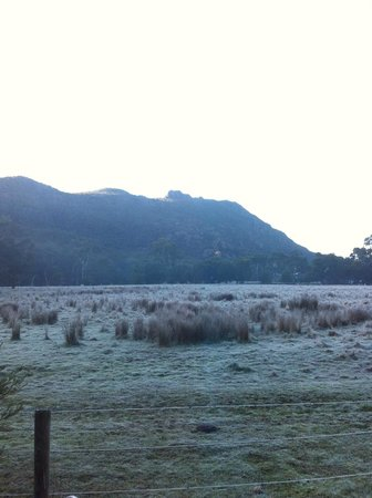 Kookaburra Motor Lodge : Frost on the paddock seen from our room, in the morning