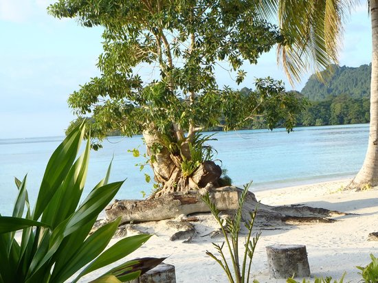Lonnoc Beach Bungalows: beautiful Lonnoc