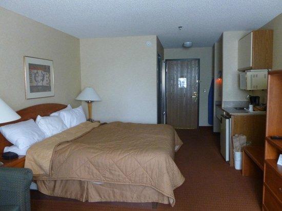 Comfort Inn Denver Southeast: Room 220 - King Bed