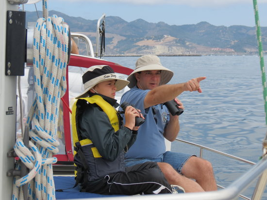 Central Coast Sailing Charters: Whales!