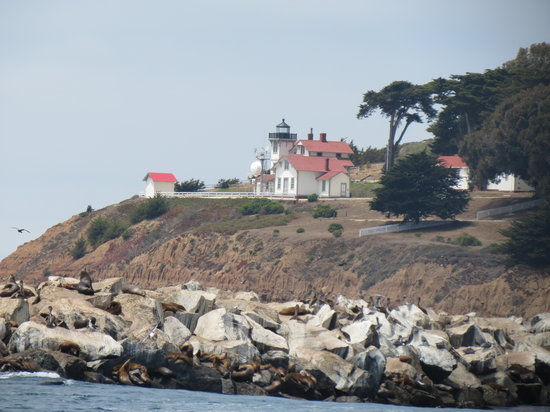 Central Coast Sailing Charters: Lighthouse on the point