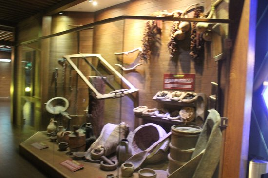 Noah's Ark Resort: Archeological display