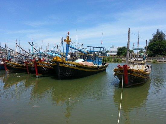 Shades Resort: Sqid fishing Phan Thiet