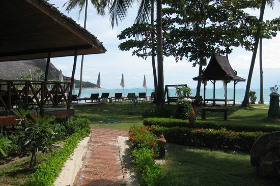 Lipa Lodge Beach Resort: View at the pool