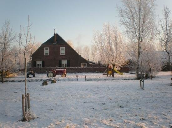 Biezenmortel, The Netherlands: winter