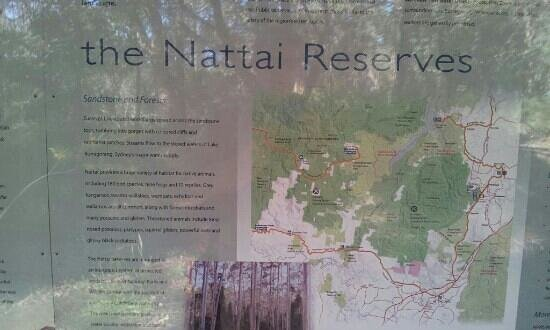 Nattai National Park: tourist guide for the lake reserve, not a lot to do