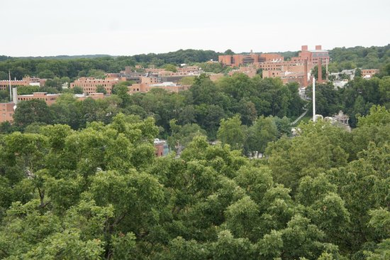 Rockford Park & Tower: view from the tower