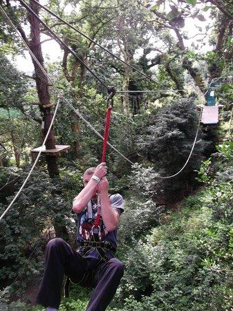 Treetop Trek: jeronimo