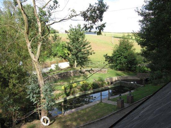 Weare Giffard, UK: View of Old Trout farm