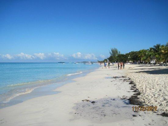 Rondel Village: negril beach