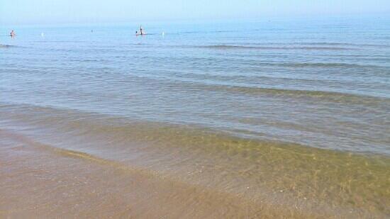 Hotel Pineta: il mare