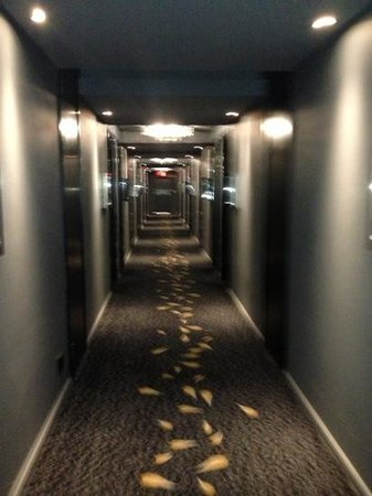 Protea Hotel Fire & Ice! by Marriott Johannesburg Melrose Arch: corridor