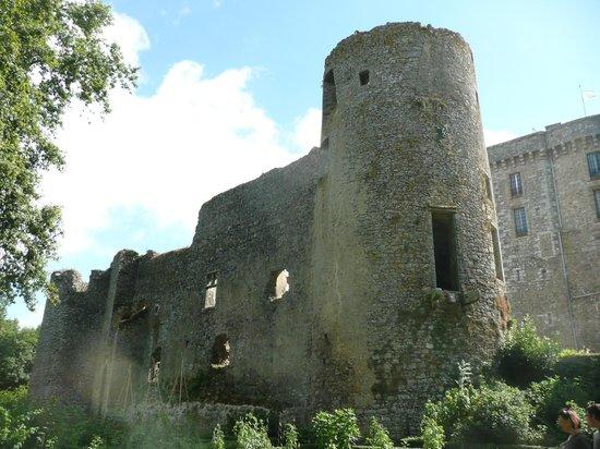 Chateau de la Flocelliere: ruine