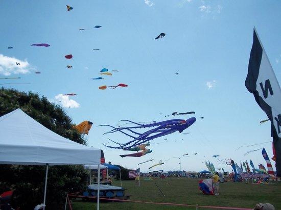 Brenton Point State Park: Tethered Kites