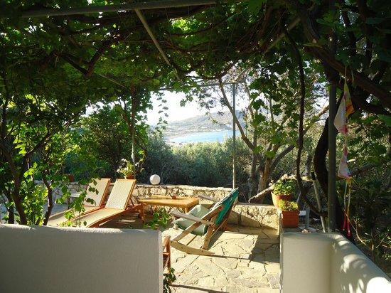 Olive Grove Apartments-Studios: Vue de la terrasse