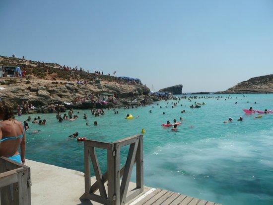 Pool - Picture of Qawra Palace Hotel, St. Paul's Bay - Tripadvisor