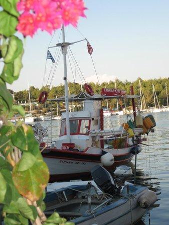 Dafnoudi Hotel : Fiskardo