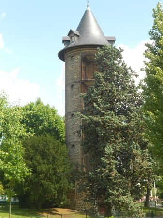 Picture of jardin d 39 acclimatation paris tripadvisor for Jardin d acclimatation