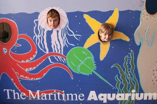 The Maritime Aquarium: Photo op