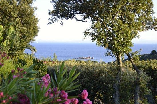 Casa Marta : Une vue exceptionnelle où nous pouvons même apercevoir la Sardaigne !