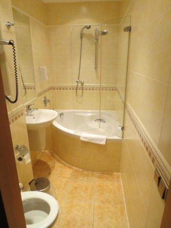 Hotel Roudna, Plzen: The big shower