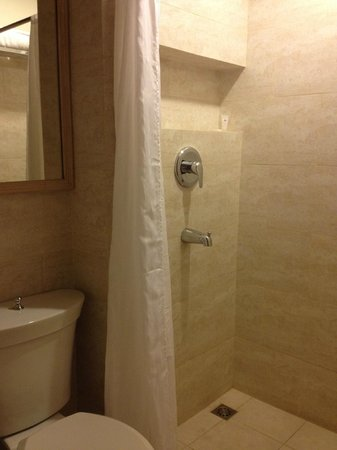 Hotel Vicente : shower