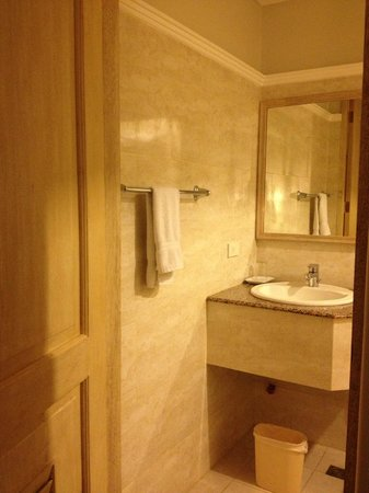 Hotel Vicente: toilet