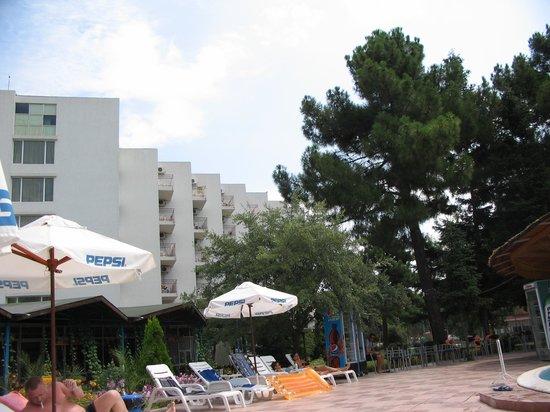 Balaton Hotel: pool