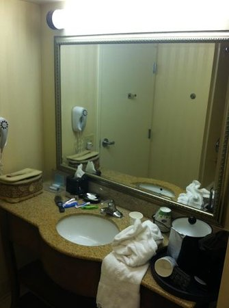 Hampton Inn & Suites Ephrata - Mountain Springs: sink