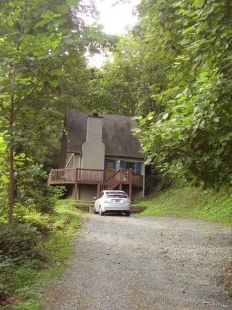 Wilderness View Cabins : Driveway off steep gravel entrance road