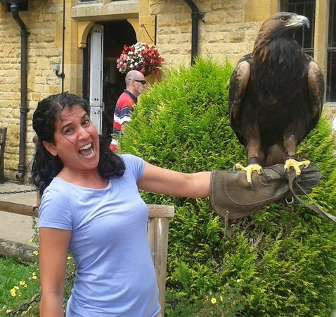 Cotswold Falconry Centre: Eve & Xena
