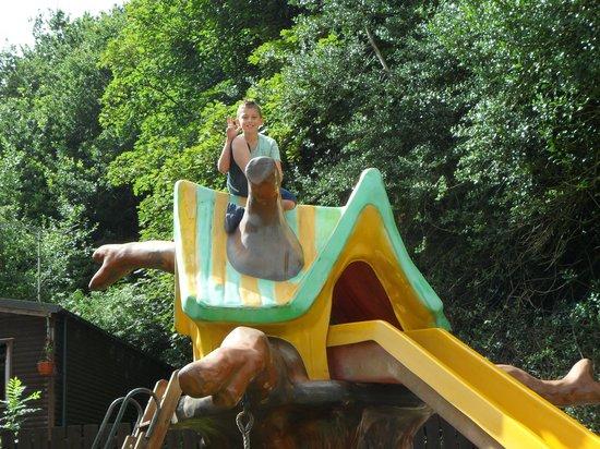 The Raddle Inn: kid play area
