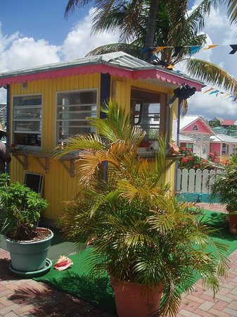 Daddy Brown's Conch Stand: This stand is easy to find at Port Lucaya Marina (Count Basie Square).