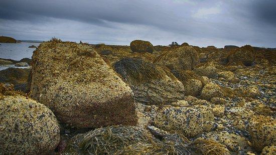 Lookout Inn: Rocks