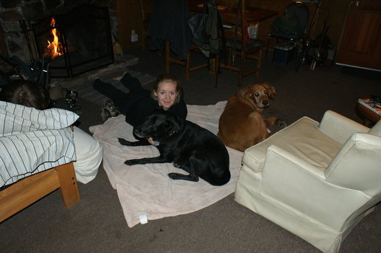 Dog Friendly Cabins Picture Of Crystal Crag Lodge Mammoth Lakes