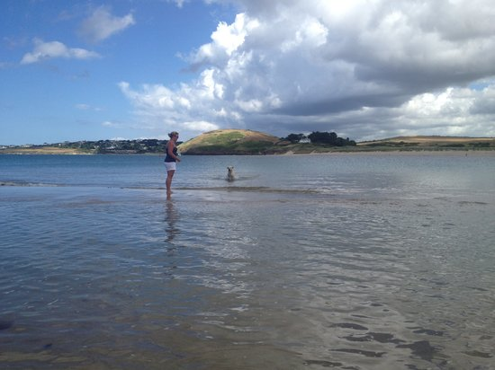 Sun Haven Valley Country Holiday Park: Nearby Padstow beach