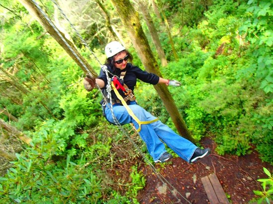 Sky Valley Zip Tours: Freefalling off the tower