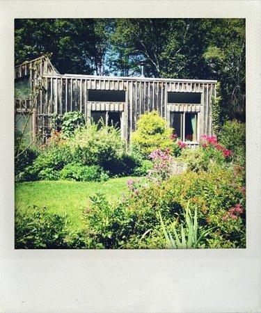 Sanctuary Garden B&B: the house