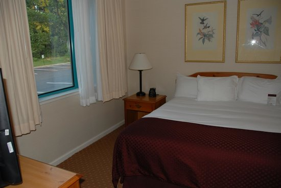 DoubleTree Suites by Hilton Hotel Mt. Laurel : King bed