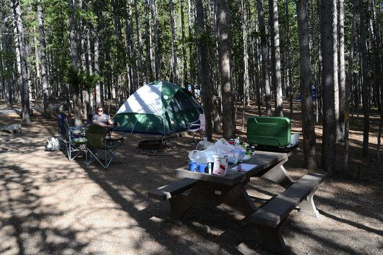 Canyon Village Campground : Campsite
