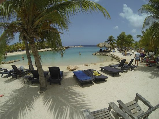 Photo of the grounds lions dive beach resort curacao - Lions dive resort curacao ...