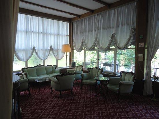 Villa Carlotta Hotel : Sala