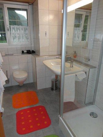Chalet Zum Steg: baño privado con ducha