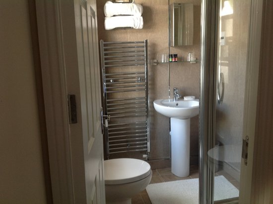 Ty Llew Bed and Breakfast: Ensuite shower room