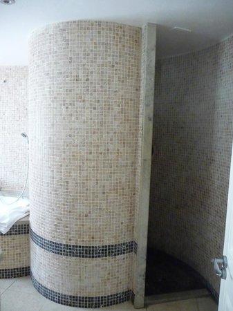 High Corner Inn : Walk in shower