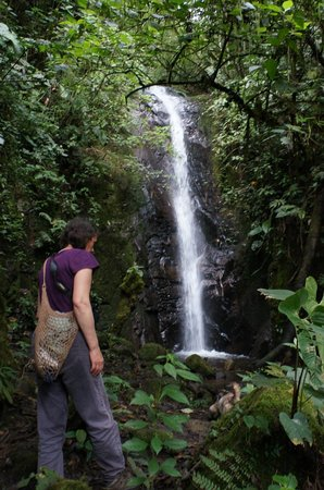 El Refugio de Intag Lodge: Sandy at the waterfall