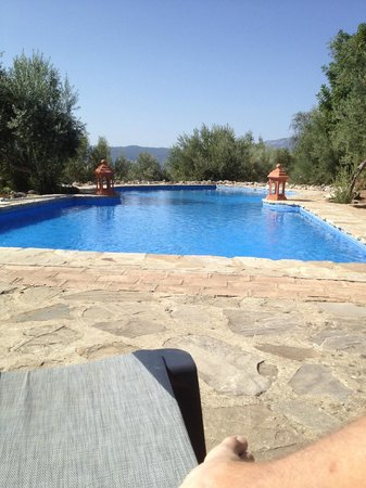 Casas Rurales Los Algarrobales : pool area